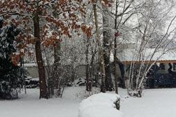 thumbnail-neige-1