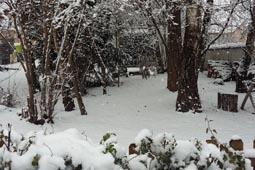 thumbnail-neige-4