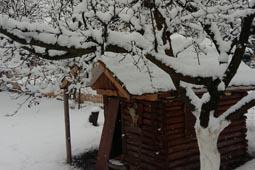 thumbnail-neige-6